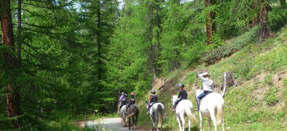 Espace loisirs des Amoureux : activités été, parc aventure, cheval, luge d'été à Saint-Veran Queyras